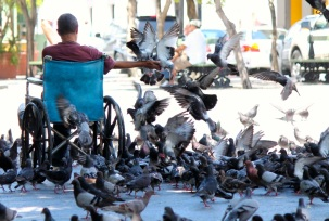 This lady is a mainstay at one of the larger squares. She sells pigeon food and sometimes demonstrates the wonderful, albeit somewhat traumatic, experience of being rushed by hundreds of pigeons at once.